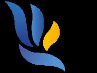 medisinfo : partenaire med'oc logiciel médical